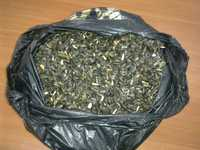 Семена подсолнечника масличного