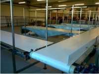 Зерноочистительное оборудование (конвейерные системы)