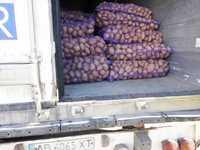 Картофель оптом 5+ 7+ на экспорт из РБ