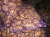 Продаем продовольственный картофель урожая 2015г