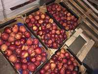 Яблоки 2 сорт
