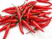 Красный, острый стручковый перец (ферганский и индийский сорта)