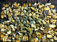 Подосиновики грибы (кубик) замороженный, Урожай 2016г