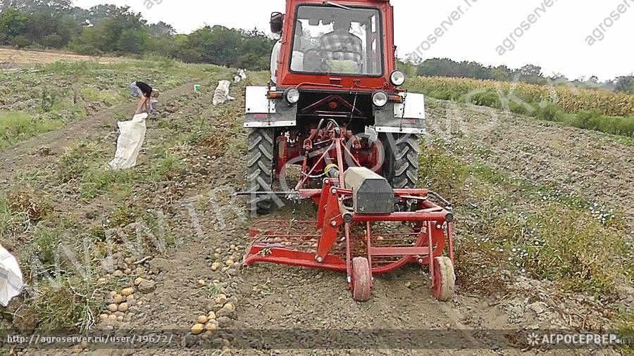 Картофелекопалка на трактор своими руками 49