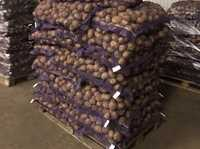 Картофель от производителя в Татарстане